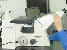 Electronic Metallurgical Microscope